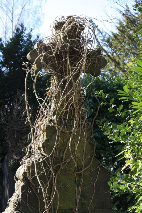 dieweg-cemetery-5
